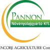 Pannon Növényolajgyár