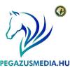 Pegazus Média - Lovasok.hu Médiaportfolió