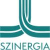Senior tanácsadó, tréner projektmenedzsment fókusszal @ Szinergia