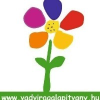 Vadvirág Alapítvány