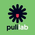 Pulilab
