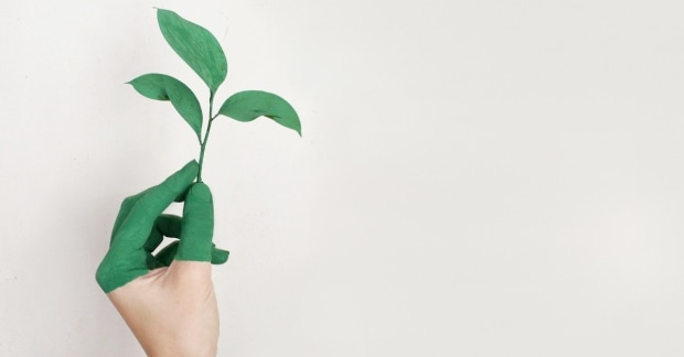 A zöld ötven árnyalata I. - Három ok, amiért bukhat a céges zöldítés.