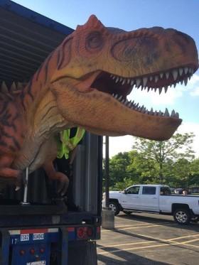 Airmax Cargo - Dinokat is szállítunk