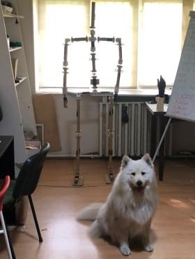 AXS Motionsystem Kft. - Kedvenc tárgy az irodában  - Budapest, Répásy Mihály u., Magyarország