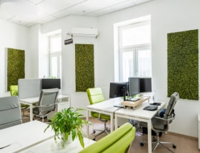cozycozy.com - Office photo  - Budapest, Wesselényi u., Hungary