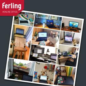 FERLING - Online office Nr.1