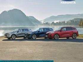 FORD HARGHITA - Kedvenc tárgy az irodában  - Strada Harghita 122, Miercurea Ciuc 530152, Románia, Ford Magyari Engineering