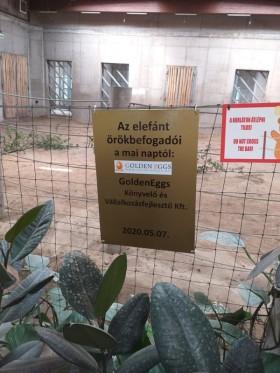 GoldenEggs Könyvelő Iroda Szeged - ez IS a covid alatt történt