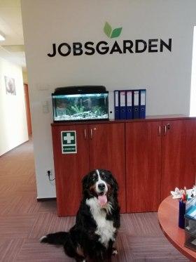 Jobsgarden Kft. - Állati jó munkahely vagyunk!
