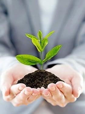 K&H Bank - Környezet tudatos iroda