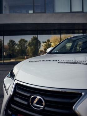 LikeDrive autósiskola - Kedvenc tárgy az irodában  - Budapest, Visegrádi u. 47, 1132 Magyarország