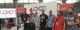 Loxon Solutions - Csapatfotó