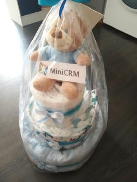 MiniCRM Romania - A legkisebbekre is gondolunk