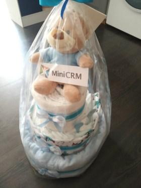 MiniCRM - A legkisebbekre is gondolunk