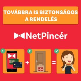 NetPincér -