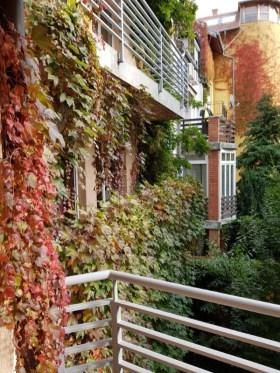Pearl Hunt - Kilátás az erkélyről