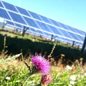 PV Napenergia - Solaris, a PV naperőműve