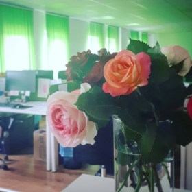 """PV Napenergia - """"felelős vagy a rózsádért..."""""""