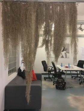Samebug - Kedvenc tárgy az irodában