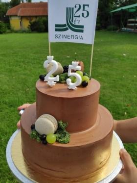Szinergia - #Szinergia25 torta