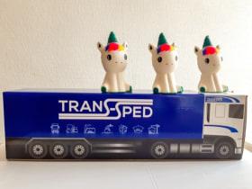 Trans-Sped Csoport - Kedvenc tárgy az irodában  - Debrecen, Vámraktár u. 3, 4030 Magyarország