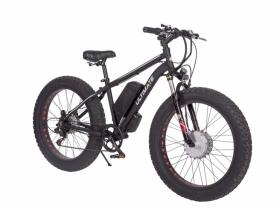 Ultimate e-bike -