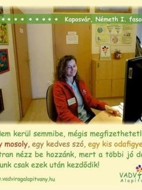 Vadvirág Alapítvány - Fotó az irodáról  - Kaposvár, Németh István fasor 27, 7400 Magyarország