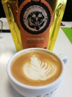 Webtown - kakiból kávét iszunk