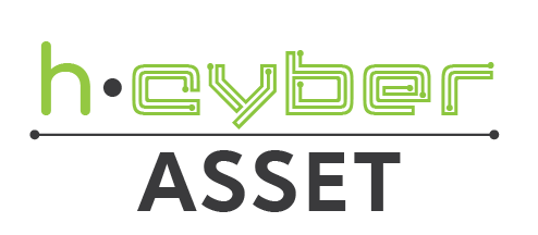 0.h-Cyber Asset.png