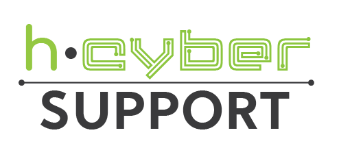 1.h-Cyber Support.png