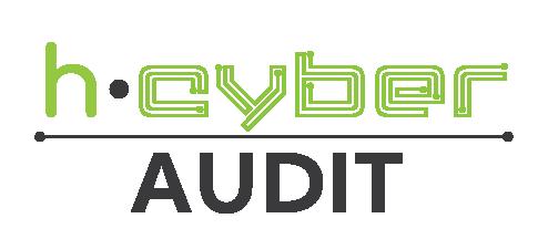 2.h-Cyber Audit.png