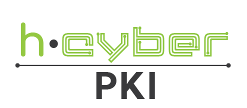 2.h-Cyber PKI.png