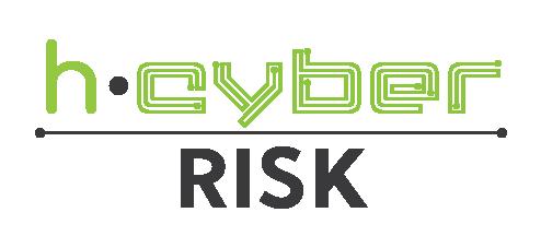 3.h-Cyber Risk
