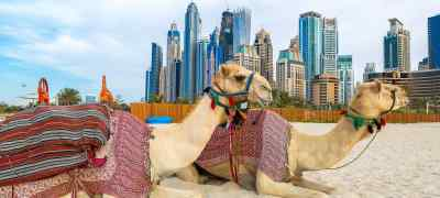 Dubai City & Abu Dhabi Beach Adventure
