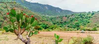 Adventure in Mexico: Bike, Hike & Beach