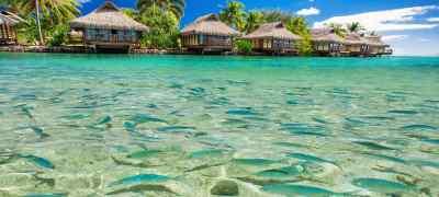 New Zealand & Tahiti