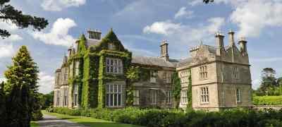 Irish Extravagance