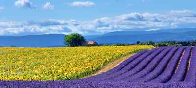 Travel Guide to Provence, France