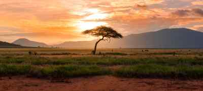 Wild & Crazy Things to do in Africa