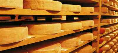 What Swiss-Made Cheese are You?