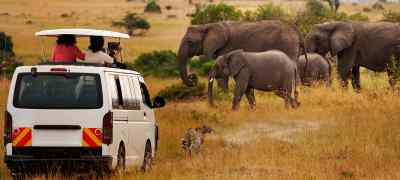First African Safari: What to Expect