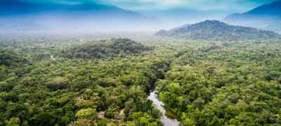 Travel Guide to the Amazon Rainforest