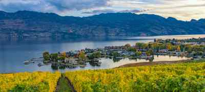 Undiscovered Wine Regions Around the World