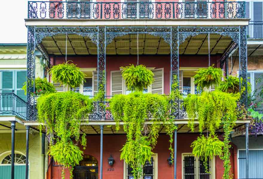 Autumn in New Orleans: Parades & Festivals