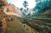 Solo Travel: Bali's Finest