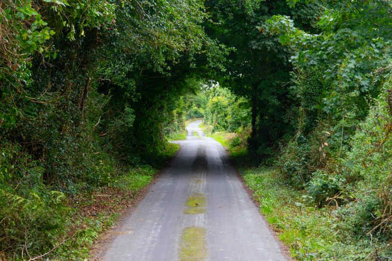 Westport bike path