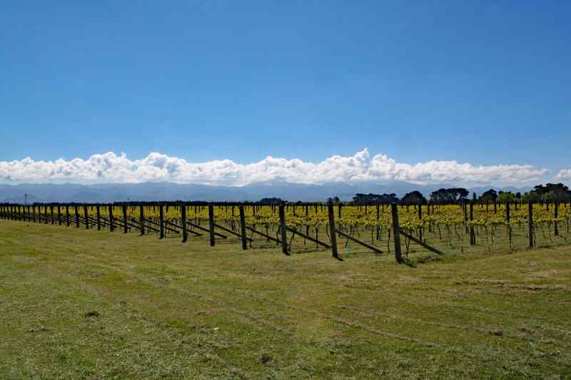 Martinborough, New Zealand