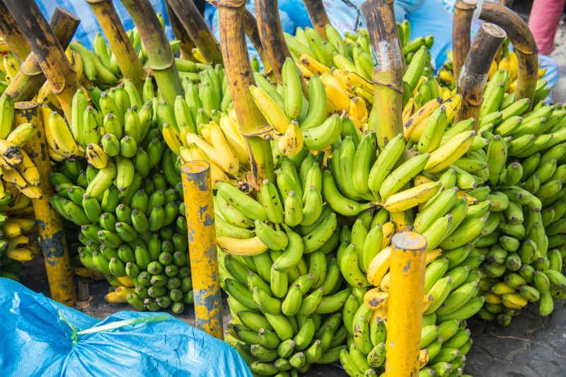 Bananas at Male market