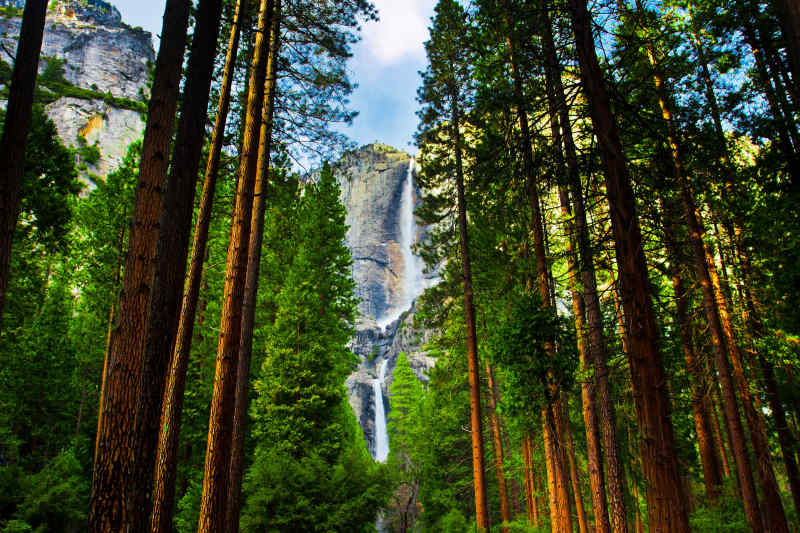 Yosemite National Park • USA