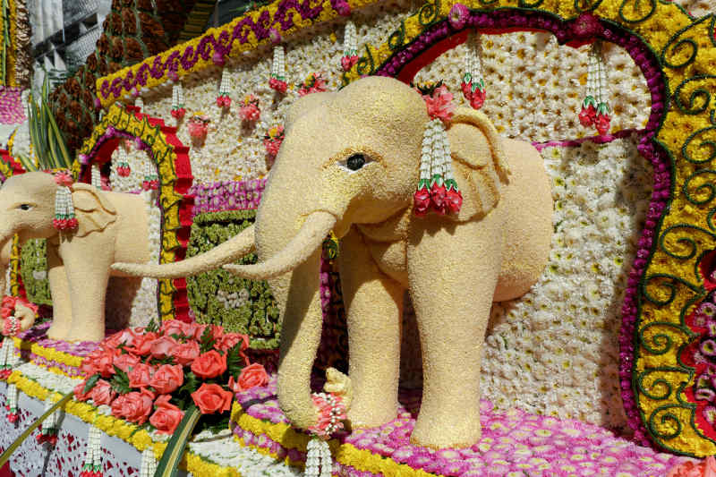 Thailand Flower Parade